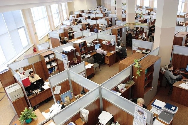 Phase in your employees, office floor